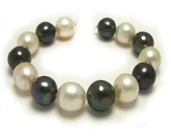 مروارید تاهیتی Tahitian pearl